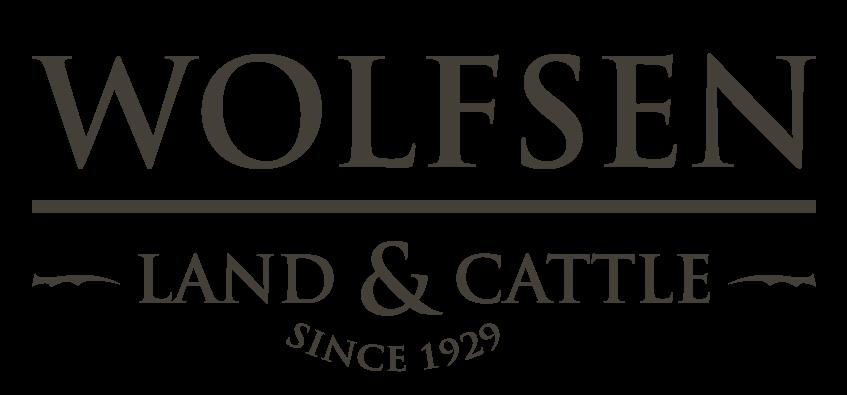 Wolfsen Inc